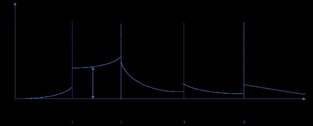 Parametrización con curvas exponenciales y saltos discretos en determinadas fechas.